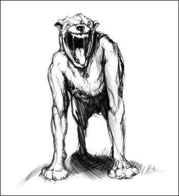 Nandibear