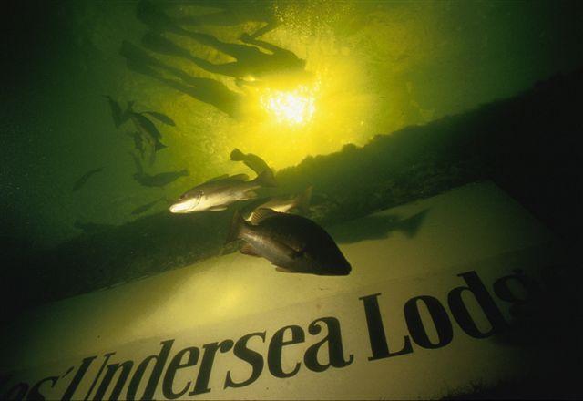 Гостиница под водой Jules Undersea Lodge