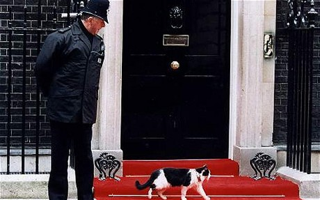 HUMPHREY THE DOWNING STREET CAT, LONDON, BRITAIN
